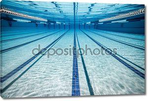 Дорожки плавательного бассейна