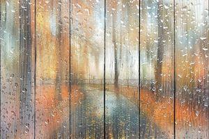 Абстрактный размытый осенний пейзаж