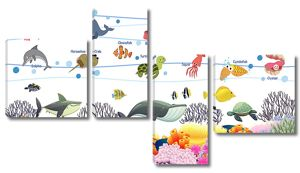 Виды морских животных