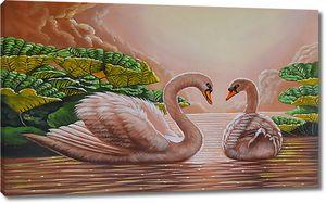 Парочка лебедей