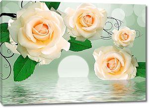 Кремовые розы над водой