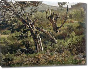 Аэс Карлос де. Лес в Альсасуа