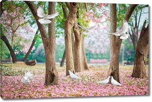 Голуби в весеннем парке