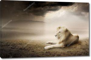 Белый Лев на закате