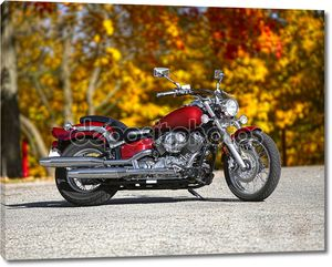 Мотоцикл на фоне ярких осенних деревьев