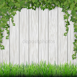 Плющ травы и висит на фоне белой старинные деревянные планки