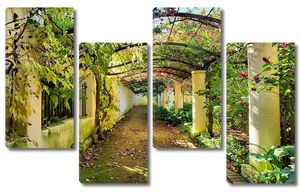 Заросшая терраса с множеством растений
