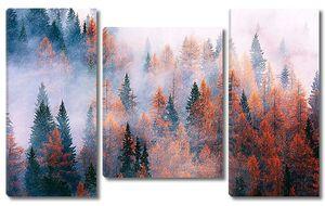 Дымка над лесом