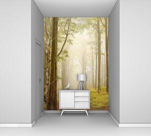 Путь через сказочный лес