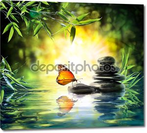 многогранную концепцию - бабочка на воде в саду
