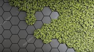 Декоративный фон зеленого вертикального сада. 3D иллюстрация .
