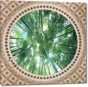 Верхушки бамбука сквозь круглое окно