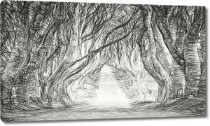Нарисованная аллея