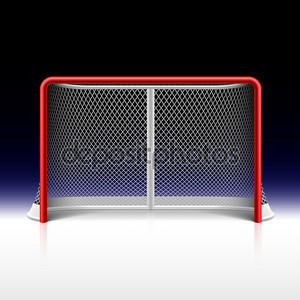 Net, цели хоккея на льду на черном