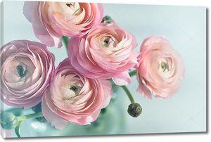 Букет из розовых лютиков