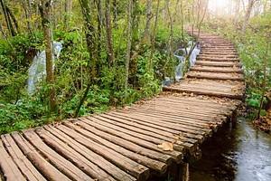 Деревянные путь в национальном парке Плитвицкие озера осенью
