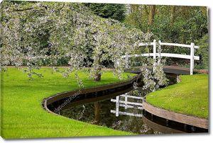 живописный парк с цветущее дерево