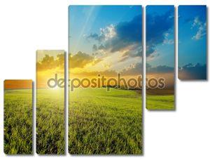 Закат над сельскохозяйственной зеленое поле
