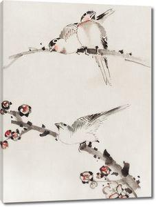 Три птицы, сидящие на ветвях, одна с цветками