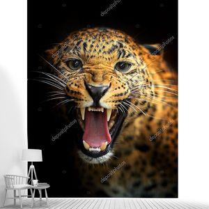 Рычащий леопард