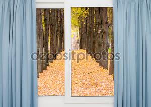 вид из окна на дорогу и Осенний пейзаж