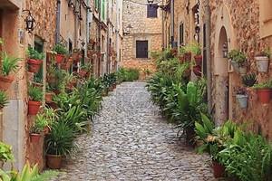Типичная деревня Вальдемосе