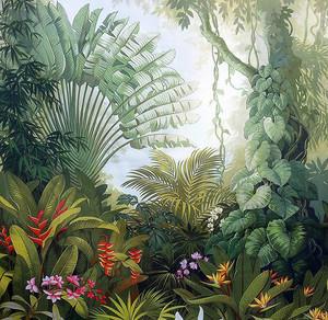 Тропическая чаща