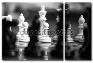 Черно белые шахматы