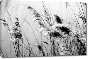 Вид отдыха природный ландшафт в черно-белом