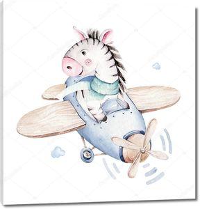 Зебра летчик