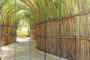 Забор из бамбука в парке