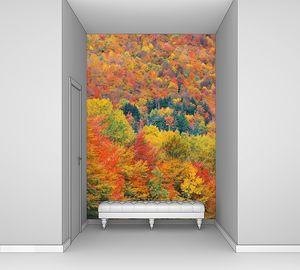 Фон осенней листвы
