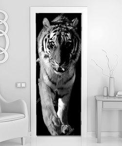 Крупный тигр