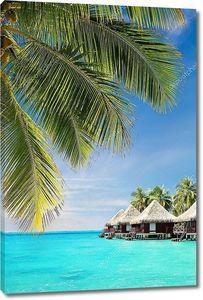 кокосовой пальмы листья над океаном с бунгало
