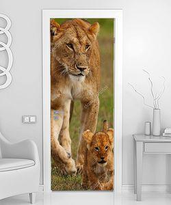 Львенок с мамой