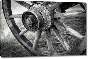 старое колесо телеги