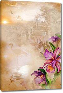 Фиолетовые орхидеи туманным утром