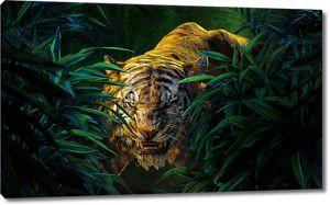Тигр в лесу