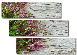 Вереск на старой древесины