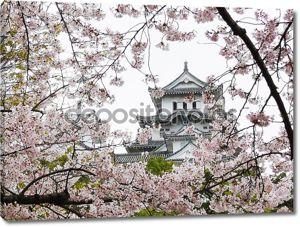 Химедзи Замок во время Сакура