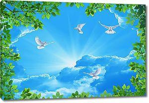 Солнце из облаков с голубями