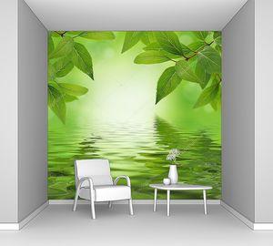 Зеленые листья в отражении