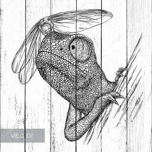 Хамелеон со стрекозой рисунок