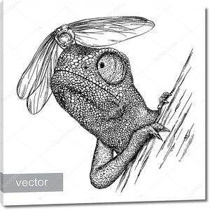 выгравировать хамелеон иллюстрации