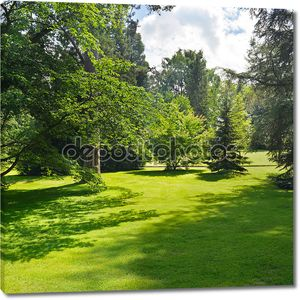 Зеленый пейзаж