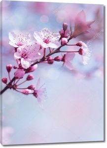 Весенний цветущий фон дерева