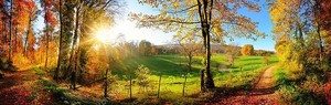Великолепный пейзаж Панорама осенью