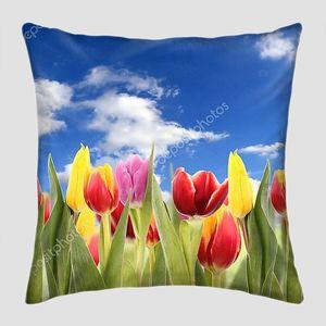 Свежие тюльпаны на фоне неба