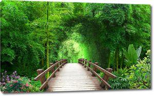 Мостки в бамбуковом леске