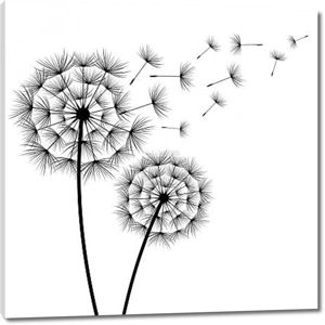 Два цветка одуванчики силуэт
